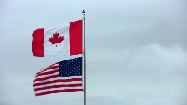 flags - kanada stock-videos und b-roll-filmmaterial
