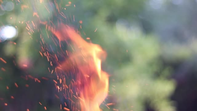 Flames and sparks in nature