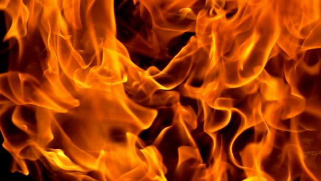 fiamme di fuoco su sfondo nero al rallentatore - inferno video stock e b–roll