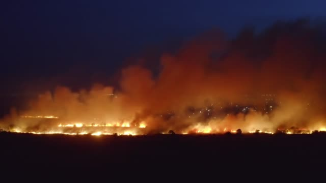Flames of massive Forest Fire, aerial view at night. Nature wildfire in dry season video