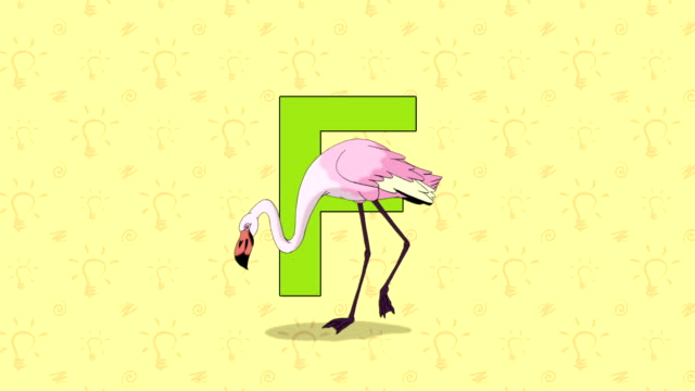 Flamingo. English ZOO Alphabet - letter F video