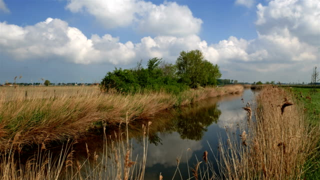Flanders, Belgium, countryside springtime scenery : polder typical water canal video