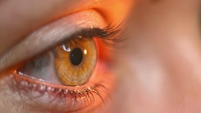 ECU Flashlight test being done on the eye video