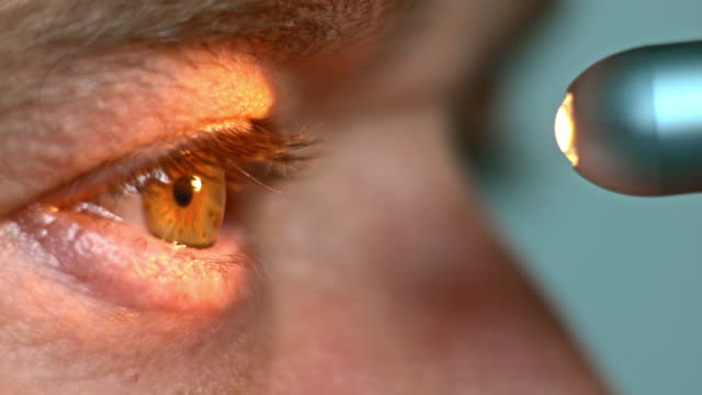 ECU Flashlight test being done on the eye Extreme close up shot of a hazel colored eye being examined by shining a light into it. eye exam stock videos & royalty-free footage