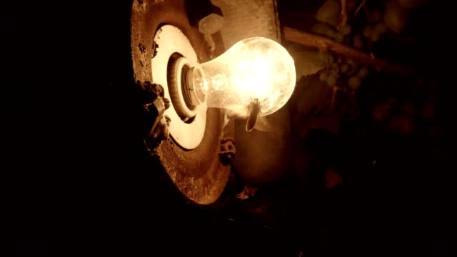Flicker of Light of Old Electric Lamp Moles Fly Around Close Up video