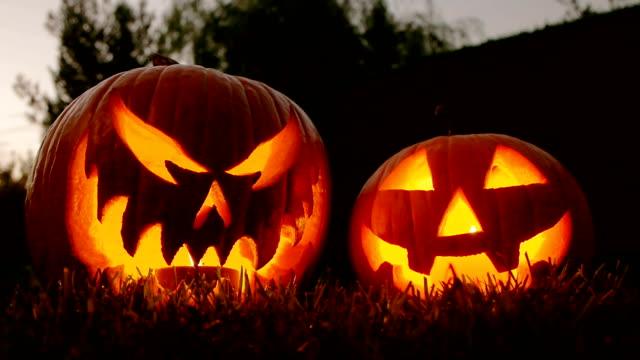 flickering pumpkin lanterns - pumpkin stok videoları ve detay görüntü çekimi