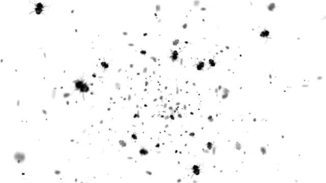 Voa insetos swarming (circulares - vídeo