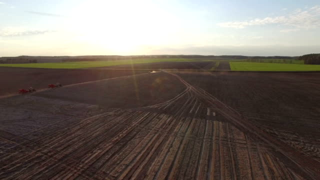 Flight above freshly cultivated fields at sunset with agricultural machinery, aerial view. video
