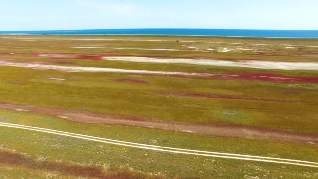 Flight above salt marshes towards blue sea, aerial video video