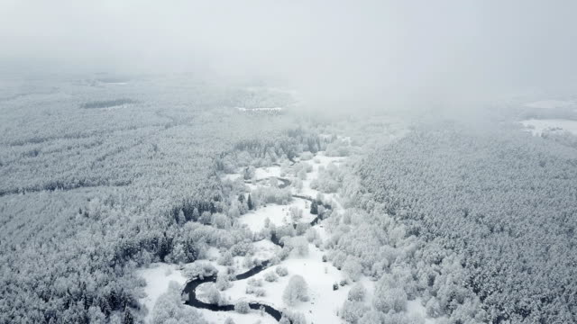4K. Flight above wild winding river in frozen forest at foggy weather. Snowly winter on the north. Aerial panoramic view 4K. Flight above wild winding river in frozen forest at foggy weather. Snowly winter on the north. Aerial panoramic view. siberia stock videos & royalty-free footage