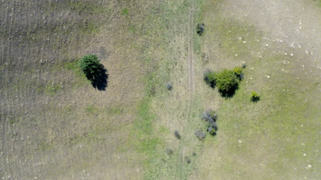 arazinin kırsal kesiminde büyük bir alandan uçuş - sale stok videoları ve detay görüntü çekimi