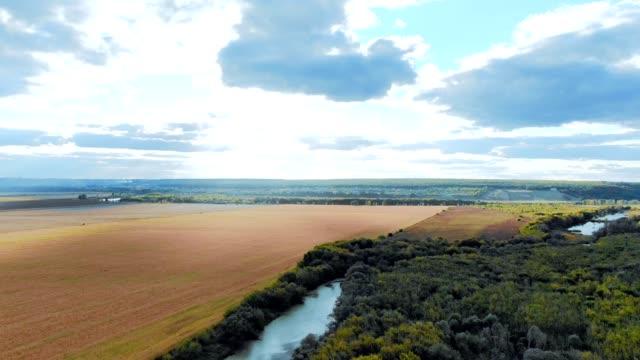 森とフィールド都市の近くの川の中での美しい田園地帯での飛行 - アルタイ自然保護区点の映像素材/bロール
