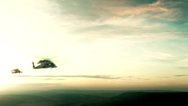 Flight of the helicopter video