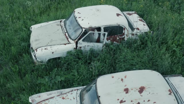 Flight on drone above abandoned rusty vintage cars in green grass, retro autos cemetery
