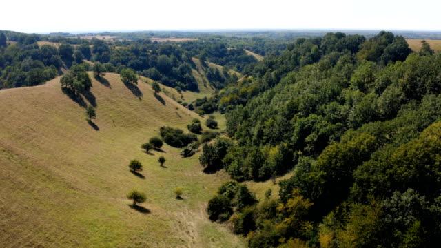 güneşli bir günde güzel bir tepe tipi arazi üzerinde uçuş - sale stok videoları ve detay görüntü çekimi