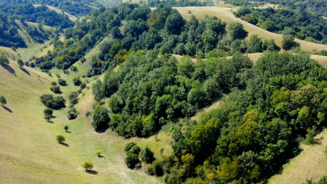 güzel bir geniş kırsal arazi üzerinde uçuş - sale stok videoları ve detay görüntü çekimi