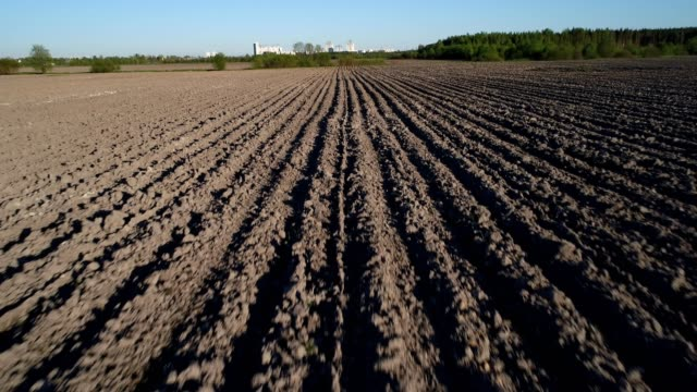 Flight over a field with strips of plowed land video
