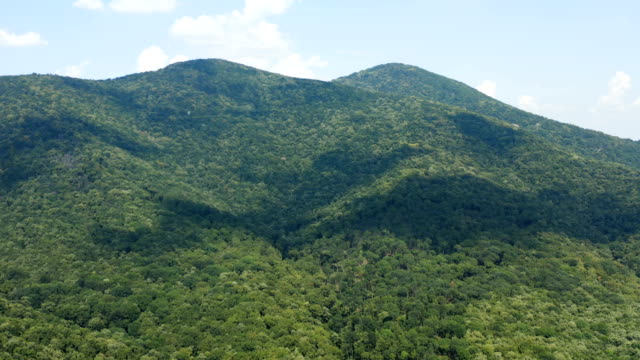 Flight over a huge mountain terrain covered by thick woods