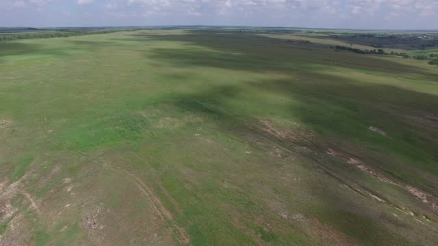 Flight over a prairie in sunny windy day video