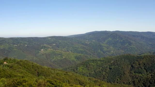 doğal bir dağlık arazi panoraması ile kalın bir orman üzerinde uçuş - sale stok videoları ve detay görüntü çekimi