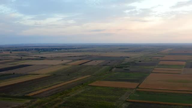 tarım salonları üzerinde uçuş - sale stok videoları ve detay görüntü çekimi
