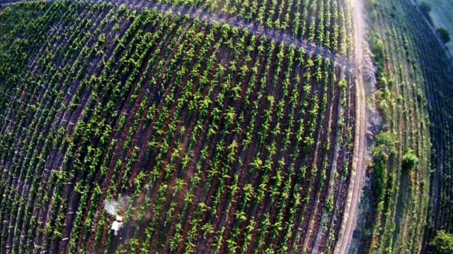 Flight over farm fields video