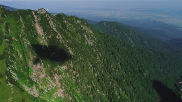 Flight over green forest and mountain range in light mist.