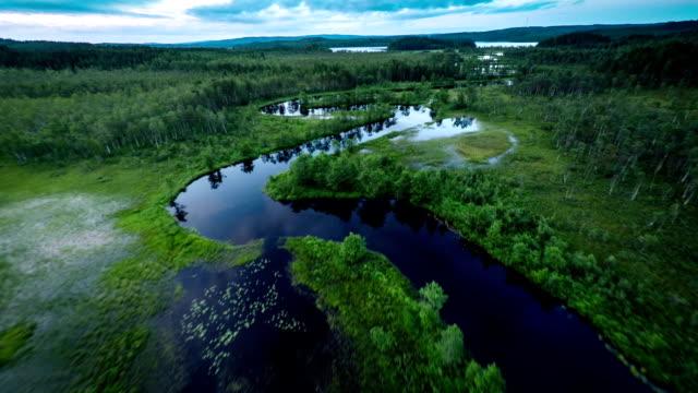Flight over river in wetland video