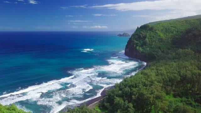 volo sulla verde costa tropicale - costa caratteristica costiera video stock e b–roll