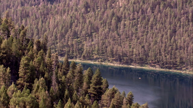 Flight Over Trees To Madison River  - Aerial View - Montana,  Madison County,  helicopter filming,  aerial video,  cineflex,  establishing shot,  United States video