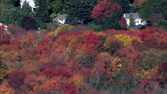 Flight Past Fall Colors Near Lexington  - Aerial View - Massachusetts,  Middlesex County,  United States video