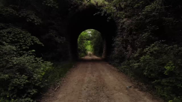 A flight through an abandoned old tunnel in the woods