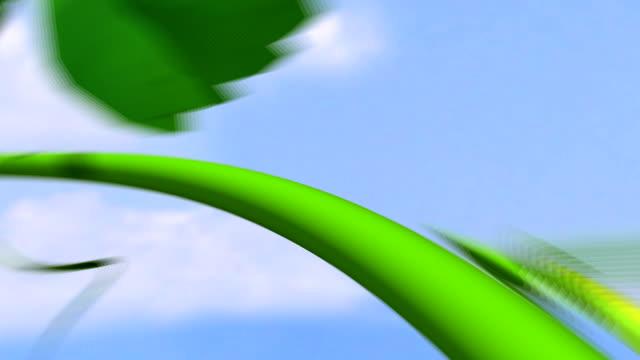 flight through grapevine video