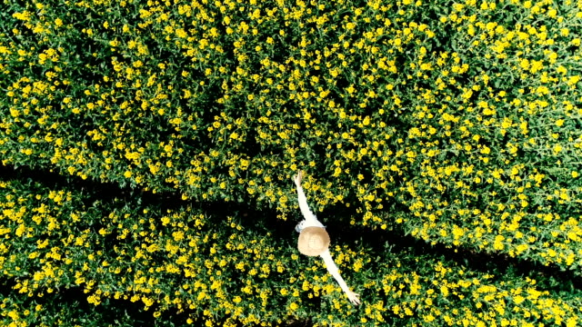 flight with drone over yellow, flowering rape field in which a pretty, young woman is located - colza video stock e b–roll