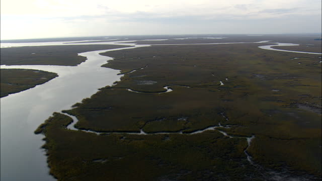 Flight With Rise To Reveal Salt Marsh  - Aerial View - South Carolina,  Charleston County,  United States This clip was filmed by Skyworks on HDCAM SR 4:4:4 using the Cineflex gimbal. South Carolina,  Charleston County,   United States marsh stock videos & royalty-free footage