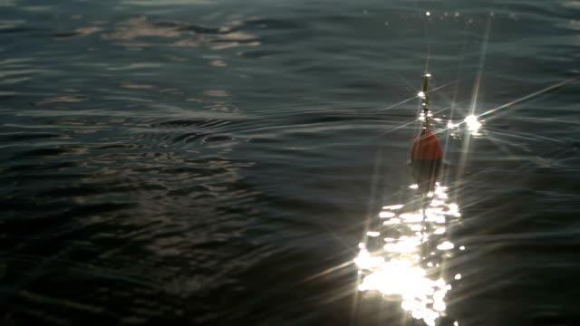 auf den wellen schweben hautnah - fischköder stock-videos und b-roll-filmmaterial