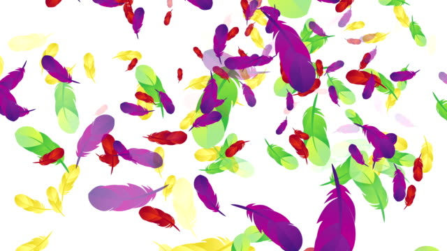Floating Multicolored Feathers video