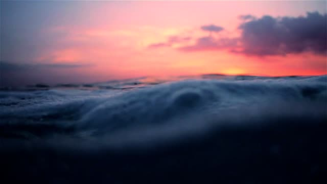 Floating on the surface of the ocean during sunset video