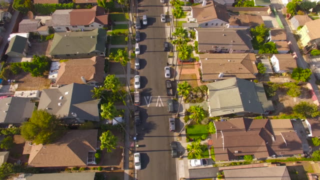Floating Over a Palm-Tree Lined Street in Los Angeles video