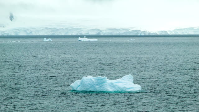 Floating-by Antarctica Icebergs Floating-by Antarctica Icebergs on a Moody Day in the Southern Ocean icecap stock videos & royalty-free footage