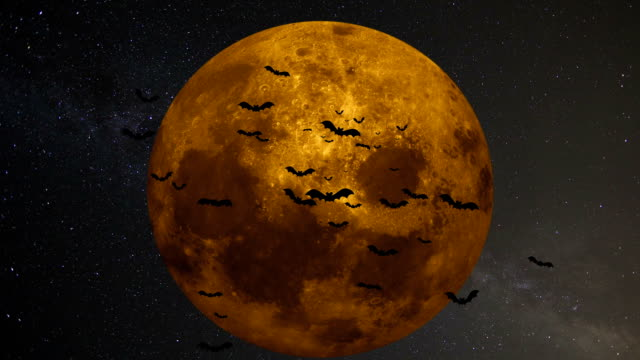 A flock of bats on the background of a large yellow moon video