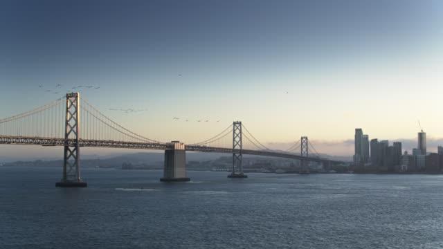 Flocks of Birds Flying Over the San Francisco Bay Bridge - Aerial Shot video