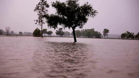 alluvione durante la stagione delle piogge - costa caratteristica costiera video stock e b–roll