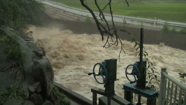 inondazione! - pioggia torrenziale video stock e b–roll