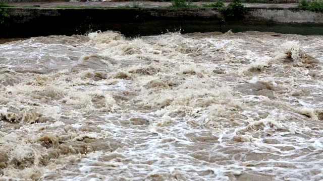 Flooded River Flooded river during rainy season. riverbank stock videos & royalty-free footage