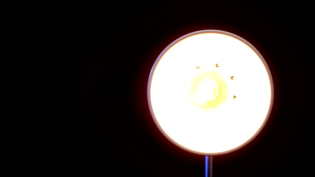 Floor lamp Real floor lamp turning on, flickering and turning off. lamp shade stock videos & royalty-free footage