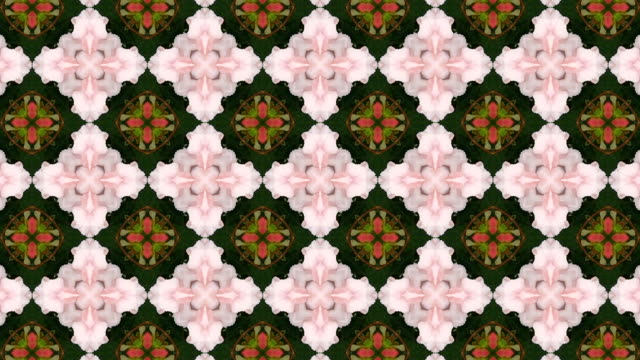 Floral abstract background pattern. video