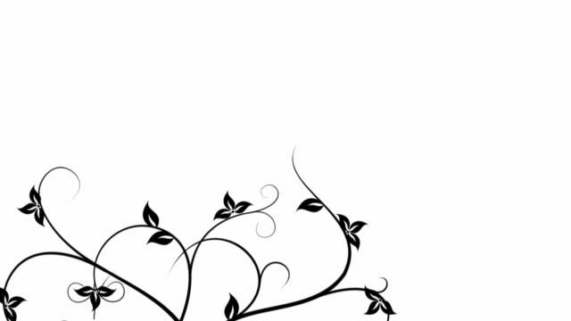 floral background animation2 black&white - blommönster bildbanksvideor och videomaterial från bakom kulisserna