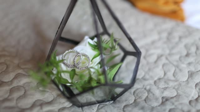 Florarium with plants and wedding rings inside.