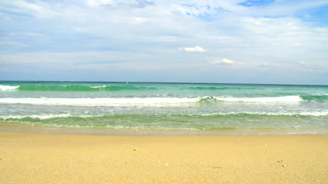HD DOLLY: Florida Beach video